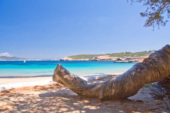 bohemia gaat op vakantie cala bassa cala bassa beach club ibiza bohemia ibiza tip bohemian